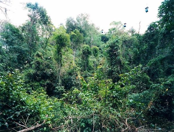 (XI SHUANG BANNA) PROVINZ YUNNAN, CHINA, 1999-3.jpg