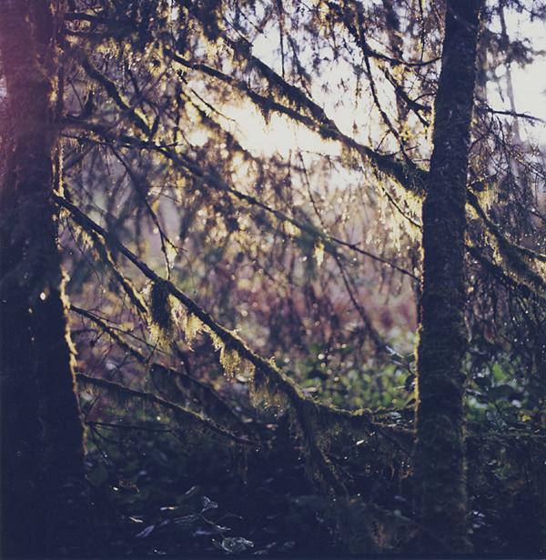 light004.jpg