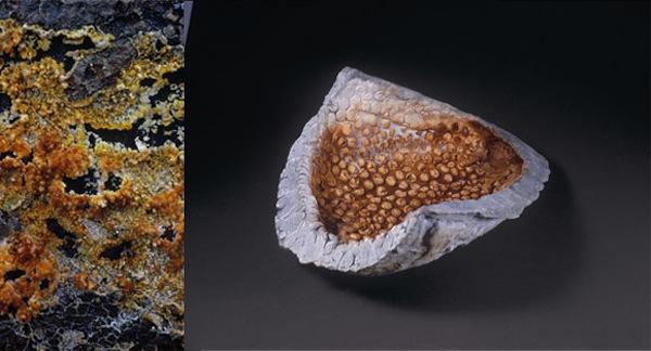 12 geothermal mineral depos