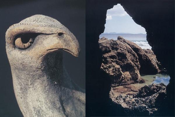 4 sea hawk