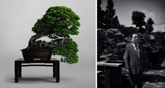 藤樹園 Toju-en, Owner, Hiromi HAMANO
