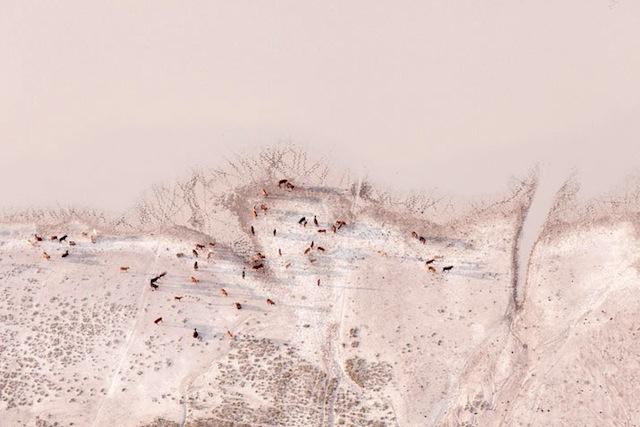 12-Zack-Seckler-Botswana-Robin-Rice-Gallery-yatzer