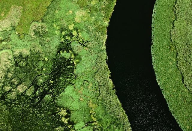 8-Zack-Seckler-Botswana-Robin-Rice-Gallery-yatzer