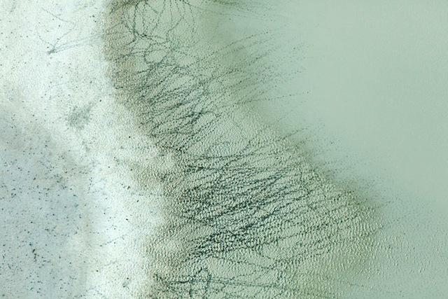 90-Zack-Seckler-Botswana-Robin-Rice-Gallery-yatzer
