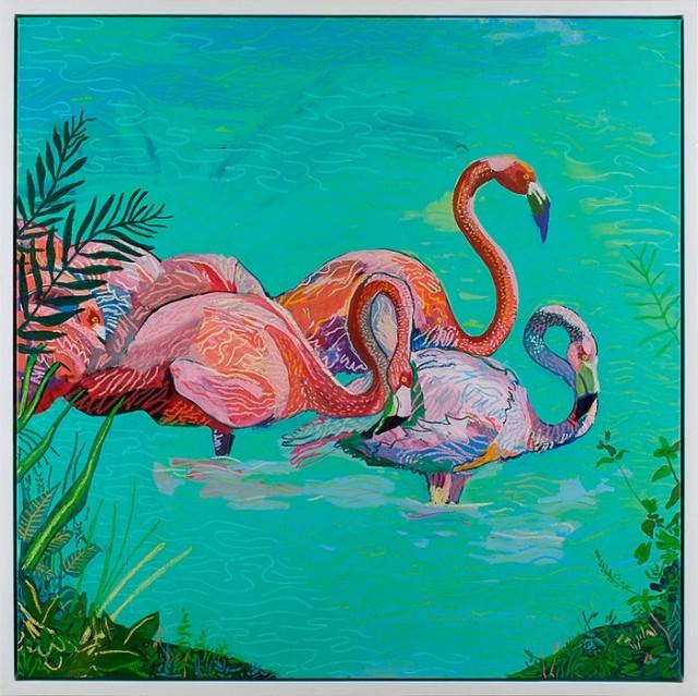 AndyDixon_Flamingos