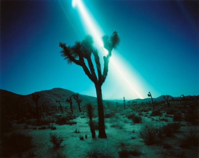 Ken Kitano, Joshua Tree National Park #2 from the series Day Light, 2013, 20 x 24 inch Chromogenic Print