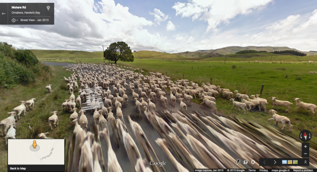 Omakere, Hawkes Bay, New Zealand