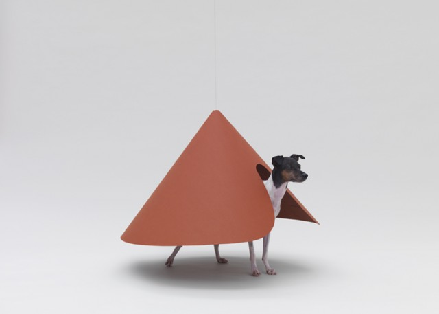 dezeen_Architecture-for-Dogs_ss_1