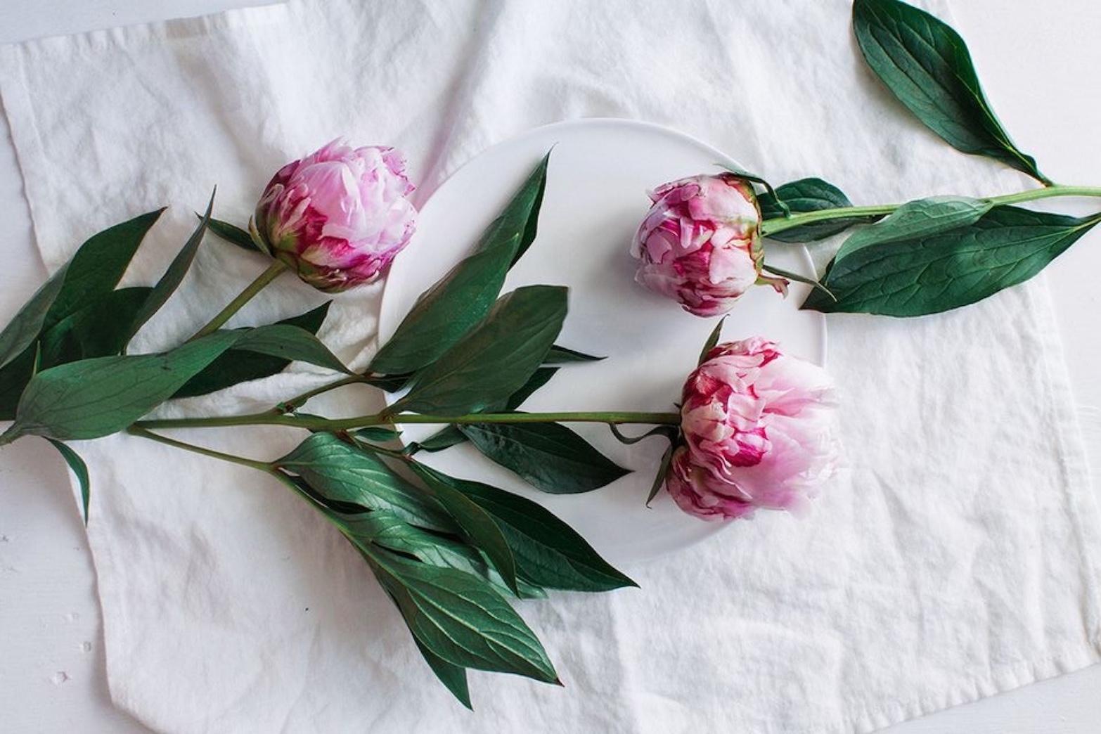 你与风光无限好的春日,只差一只花瓶的距离